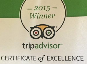 Trip Advisor Excellence Award Winners!